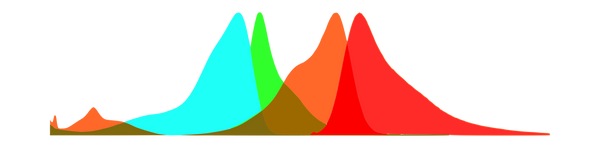 EGFP and mCherry excitation-emission spectra