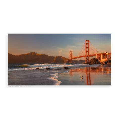 Golden Gate Glow - Pueo Gallery