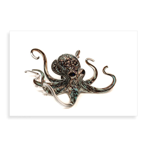 Aqua Grey Octopus - Pueo Gallery