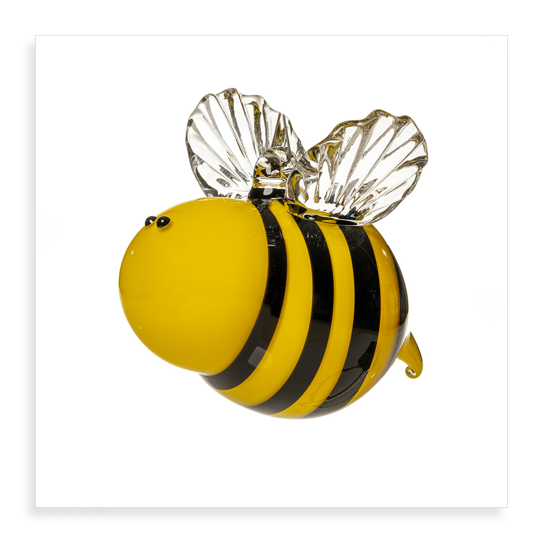 Glass Bee - Pueo Gallery