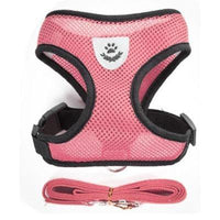 Breathable Small Dog Pet Harness and Leash Set | The Pet Talk