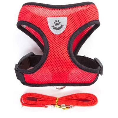 Small Dog Pet Harness and Leash Set - The Pet Talk