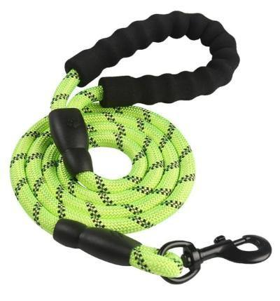 Durable Nylon Dog Walking Training Leash - The Pet Talk