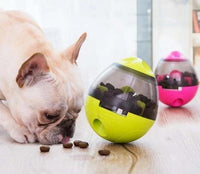 Interactive Dog Cat Food Treat Ball Bowl Tumbler Toy | The Pet Talk