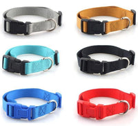 Classic Polyester Pet Collar with Quick Snap Buckle | The Pet Talk