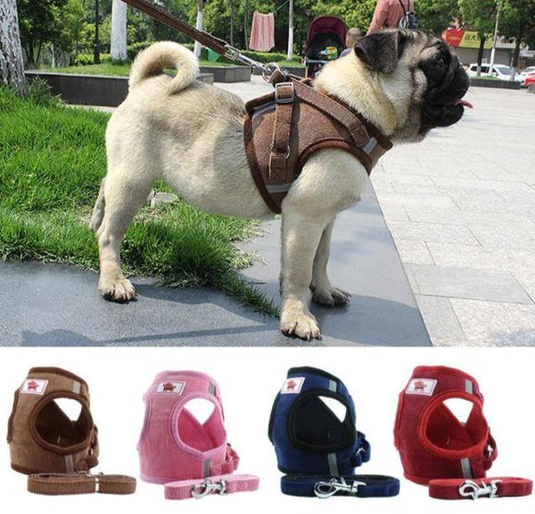 Soft Breathable Collar Vest Leash Adjustable | The Pet Talk