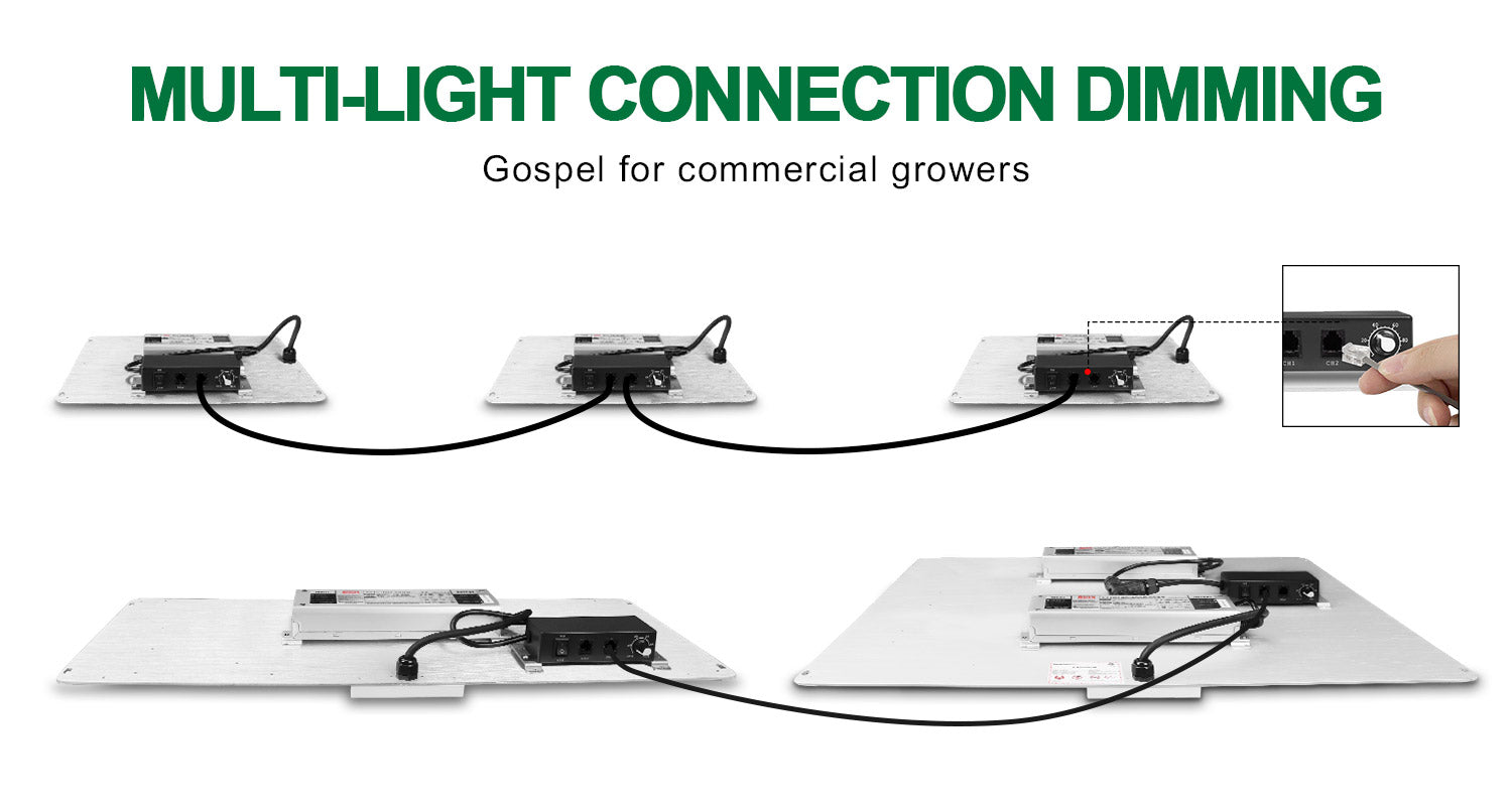 How to connect together to dim all together spider farmer Spider Farmer sf4000 SF4000 sf2000 SF2000 & SF1000 sf1000  spiderfarmer LED Grow Lights UK Official Partner Supplier/Retailer
