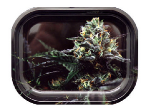 OG Kush Design Metal Rolling Tray - Best Bongs And More