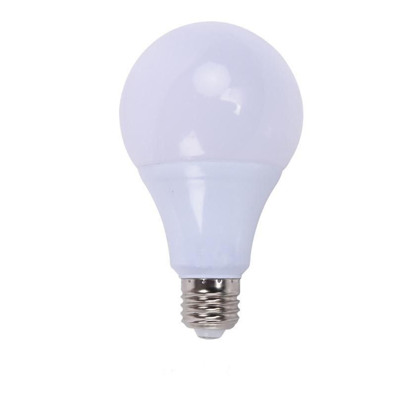 Ampoule LED E27 12W Blanc Froid | LumiDreams
