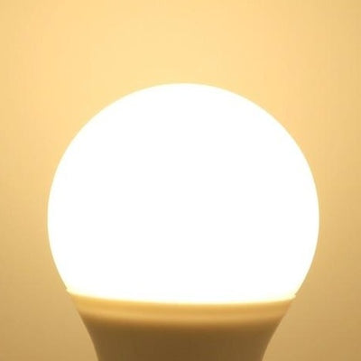 Ampoule LED E27 Lot