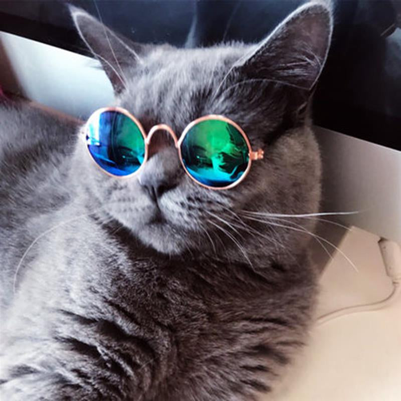 Pet Cat Glasses Dog Glasses Lovely Cat Eye-wear Dog Sunglasses Photos Prop Pet Accessoires Pet Products for Little Dog