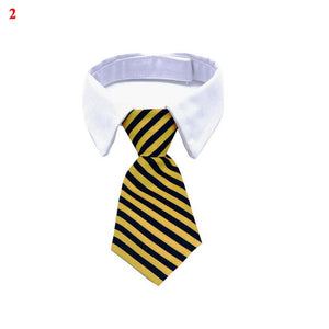 Striped Necktie - MacryDog