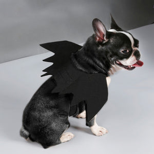Macry's Bat Wings