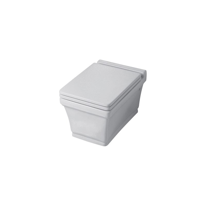 Disegno Ceramica Neo Wc Sitz mit Soft Close – NE20600001
