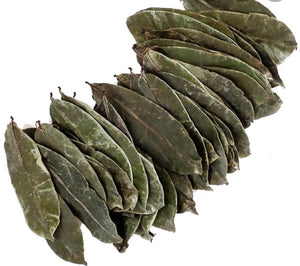 Graviola Guyabana Corossol (SourSop LEAVES 200 count!)