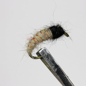 Brassie & Caddis Nymphs, Pkt of 3 Flies