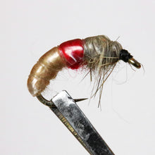 Load image into Gallery viewer, Brassie & Caddis Nymphs, Pkt of 3 Flies