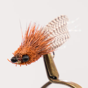 Terrestrials   Pkt of 3 Flies