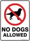 NO DOGS ALLOWED