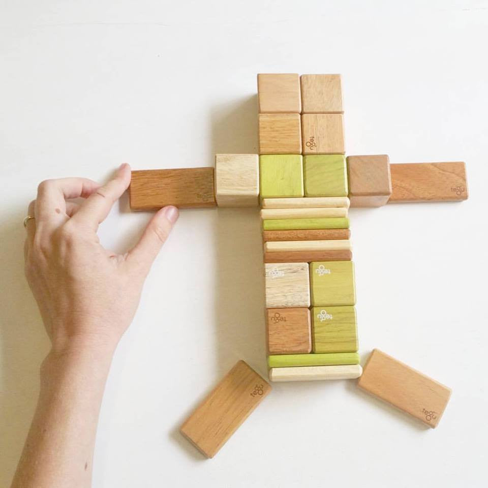 Tegu Magnetic Play