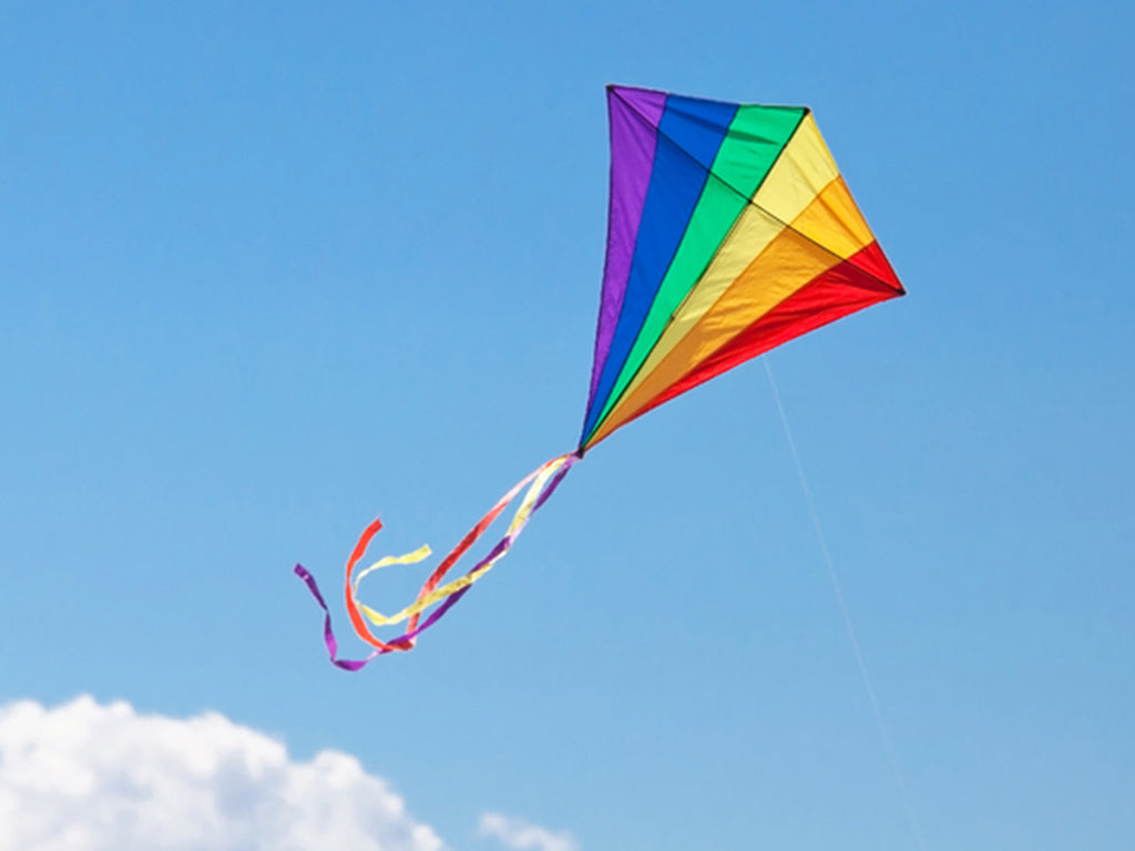 Flying Kites is Family Fun!