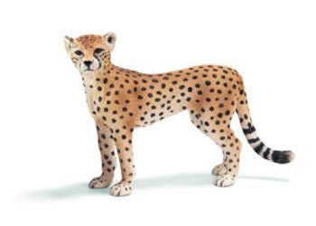 Schleich - Cheetah Female - Earth Toys