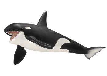 Schleich - Killer Whale - Earth Toys