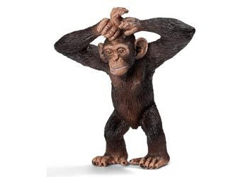 Schleich - Young Chimpanzee - Earth Toys