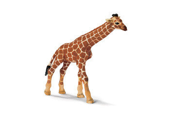 Schleich - Giraffe Calf - Earth Toys