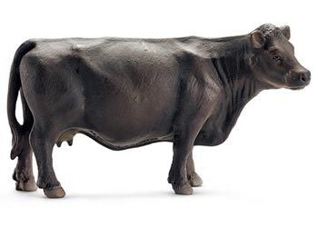 Schleich - Black Angus Cow - Earth Toys