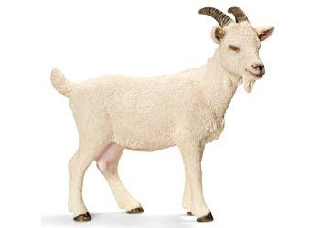 Schleich - Domestic Goat - Earth Toys