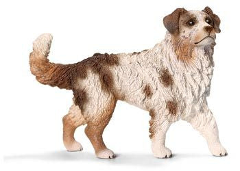 Schleich - Australian Shepherd Female - Earth Toys