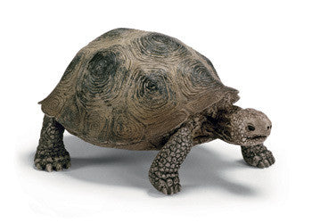 Schleich - Giant Tortoise - Earth Toys