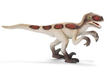 Schleich - Velociraptor Small Excl - Earth Toys