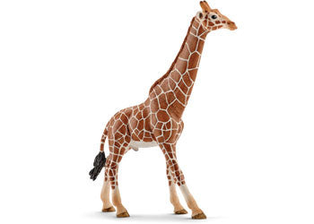 Schleich - Giraffe Male - Earth Toys
