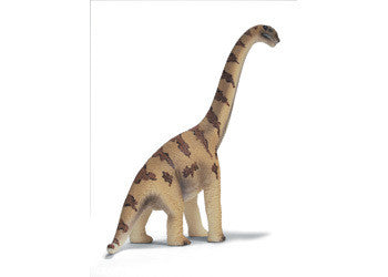 Schleich - Brachiosauras Small - Earth Toys