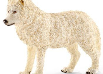 Schleich - Arctic wolf - Earth Toys