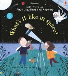 What's it like in space? Board Book