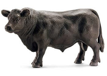 Schleich - Black Angus Bull - Earth Toys
