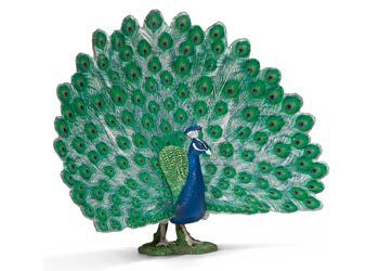 Schleich - Peacock - Earth Toys