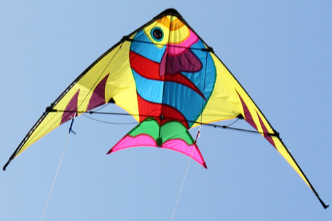 Stunt Kite - Sunfish