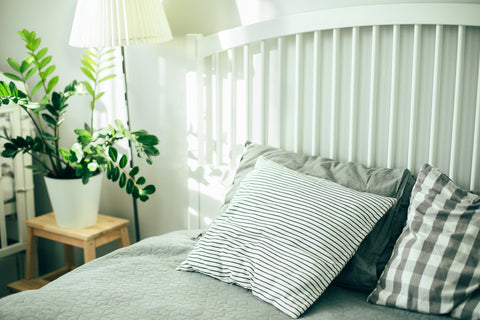 Scandi Style Bedroom With Plant