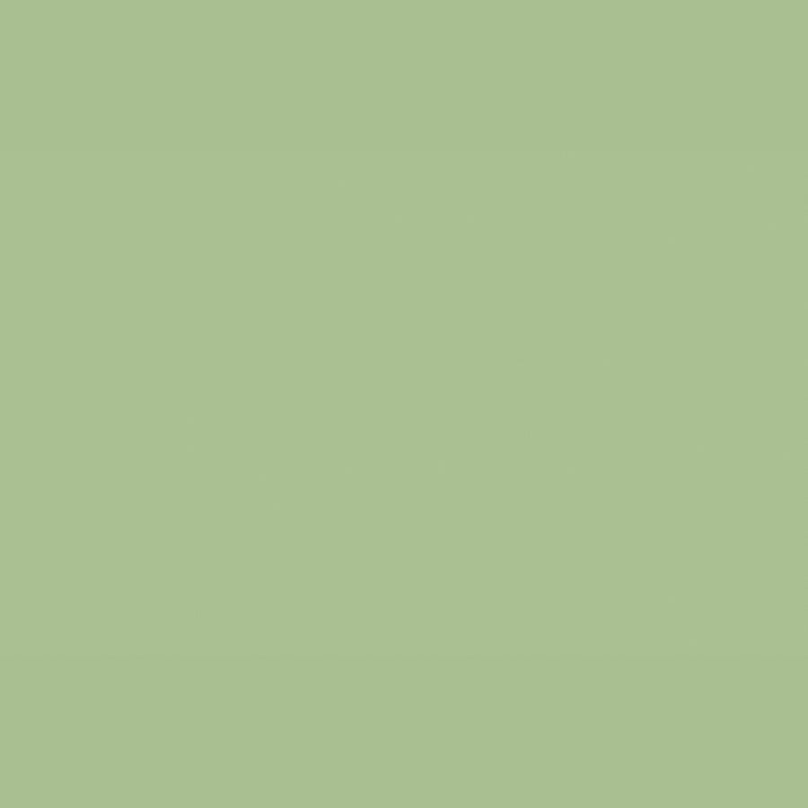 Little Greene - 091 - Pea Green