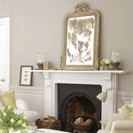Little Greene - 161 - French Grey Pale