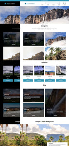 Roraima - A Shopify theme on Tailwind CSS
