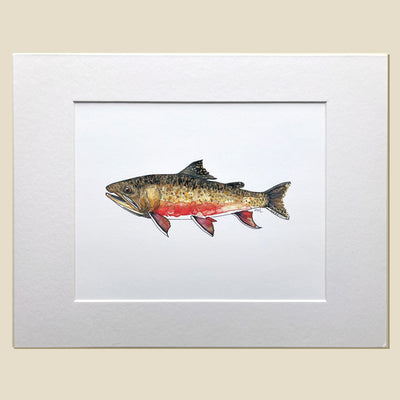 Brook Trout Print with Mat