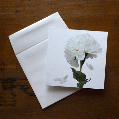 White Peony All Occasion greeting card