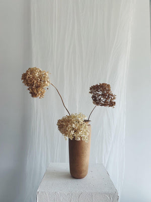 Vases - Tall Vase with Hydrangeas - Conrad & Dina - The Wild Bunch Florist - Vancouver Flower Shop Delivery