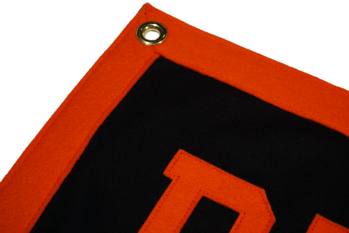 Buffalo State College Banner