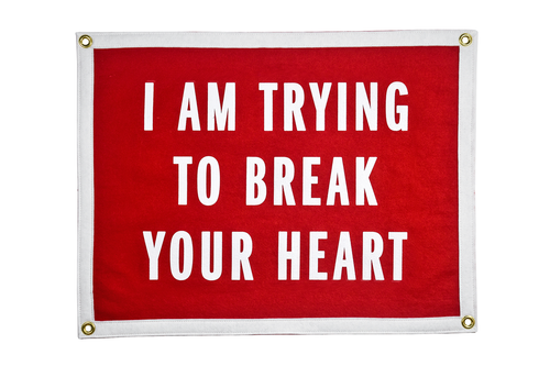 I Am Trying To Break Your Heart Camp Flag • Wilco x Oxford Pennant Original
